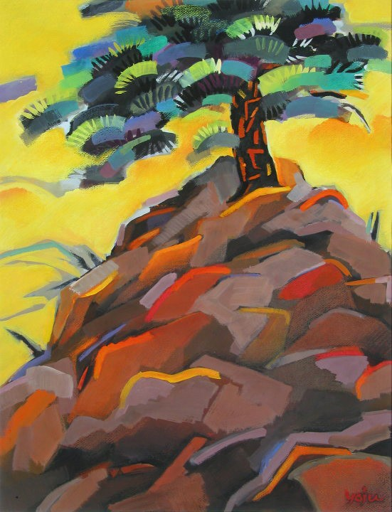 Pine Tree and Rock